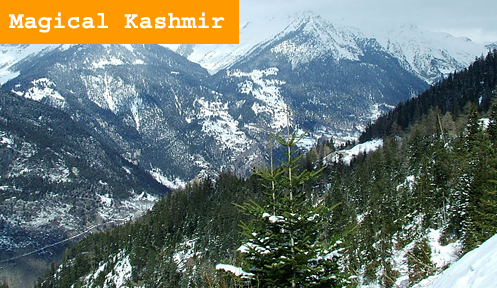 Srinagar Kashmir Package